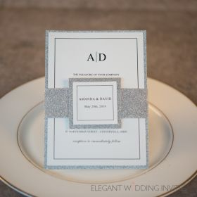 wedding day soiree- simple fun initial wedding invites with matched silver glittery EWI448