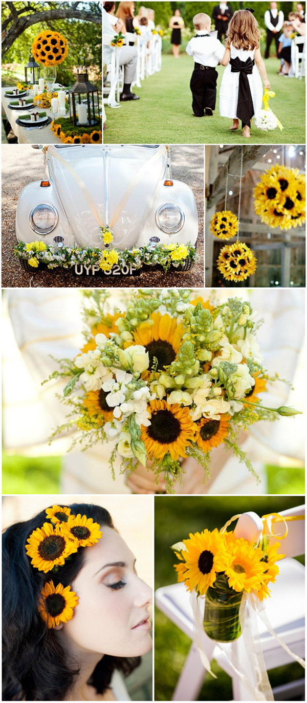 If I have to say one flower that I love most, that would be sunflowers, which are so majestic looking in the garden when they are in full bloom, and their seeds naturally attract all kinds of pretty little birds, that add to their beauty. Yes, the theme of today is the sunflower wedding.