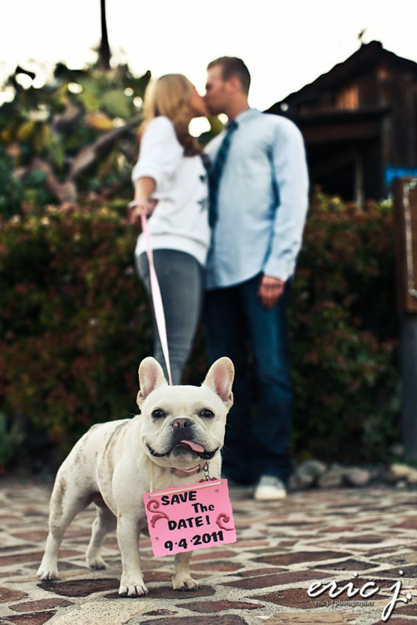 cute save the date ideas with dog