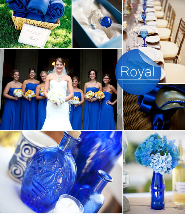 Elegant Rustic Royal Blue Fall Wedding Color Ideas 2017
