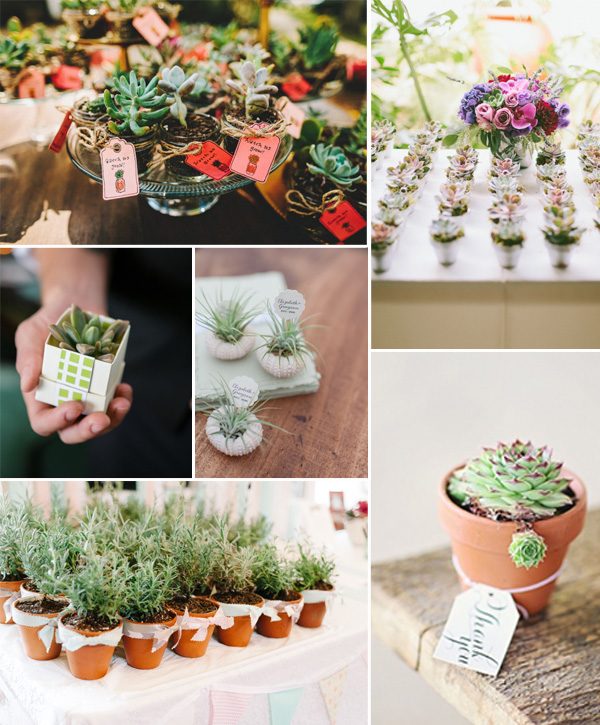 2014 trending fall wedding favors with cute plants