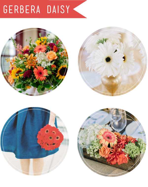 gerbera daisy fall wedding flowers and bouquets for wedding planning