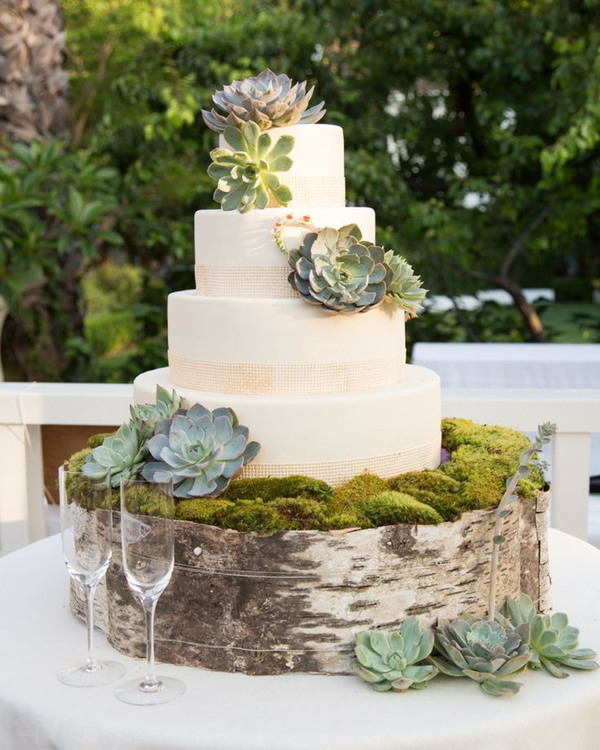 succulent inspired rustic chic wedding cakes