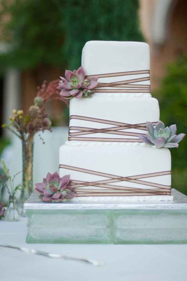white and brown colored succulent wedding cakes