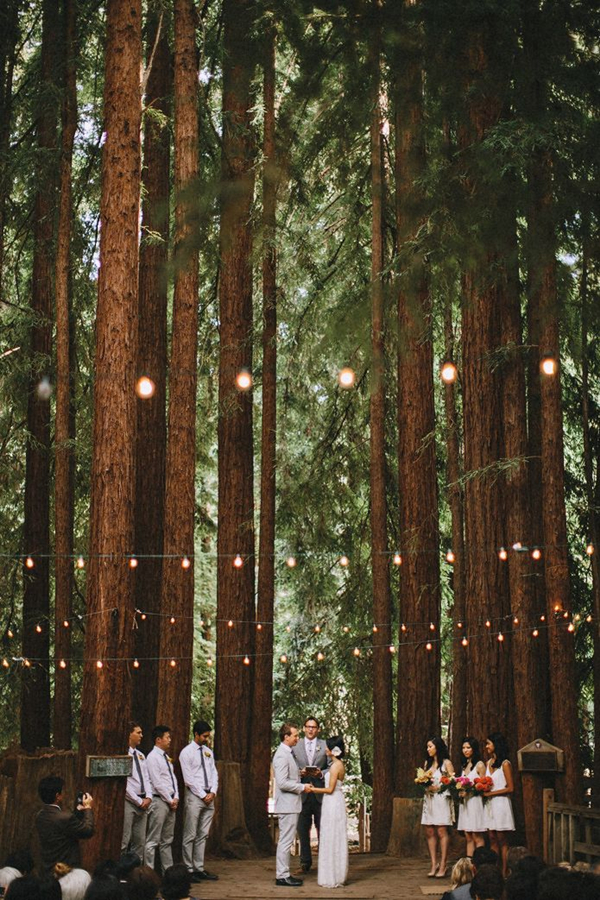 unusual forest wedding ceremony surrounded by pine trees
