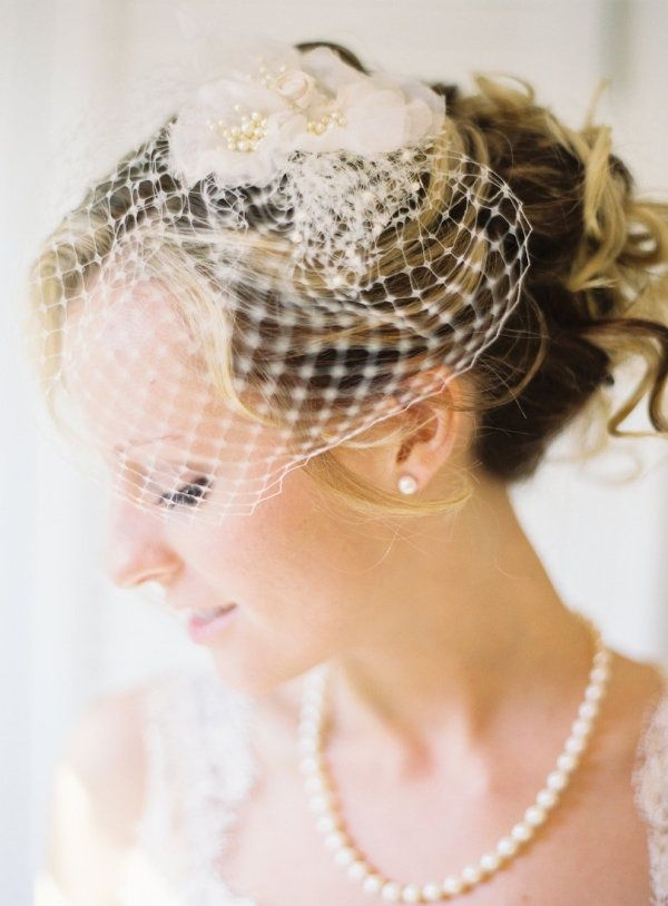elegant bridcage wedding veils