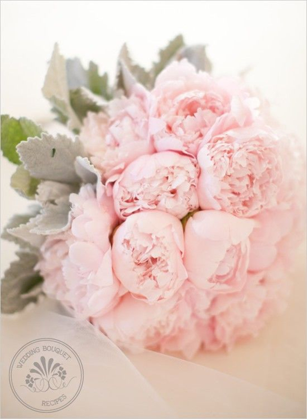 Pink Peony Wedding Bouquet with Dusty miller