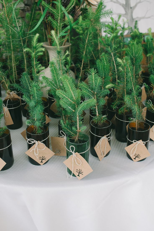fab christmas tree winter wedding favors perceft for eco-friendly couple