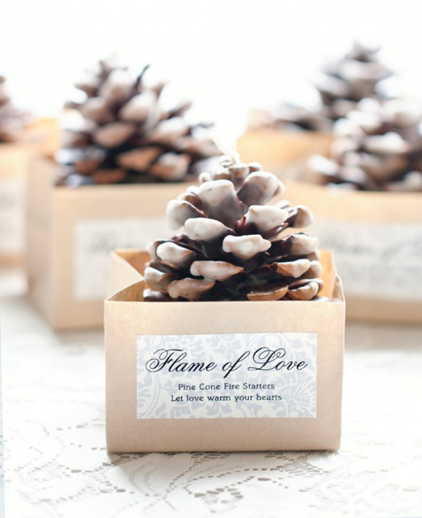 21 wonderful winter wedding gift and favors ideas unique winter wedding ideas of pinecone fire starers junglespirit Choice Image