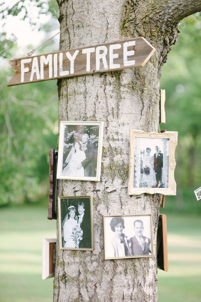 vintage family tree wedding decor ideas