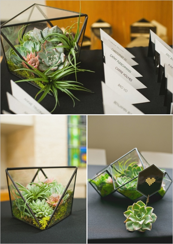 succulent and air plant planters modern wedding centerpieces