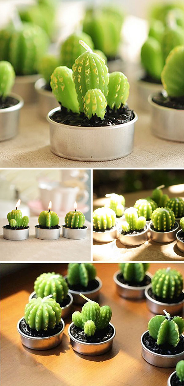 cactus candle lights in tin can holders