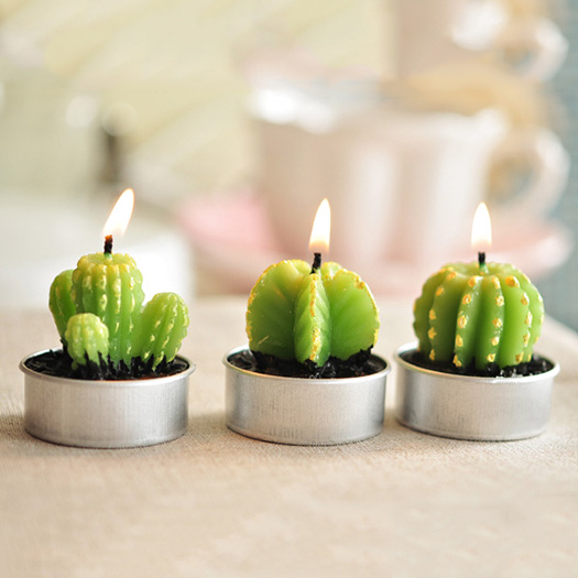 desert plant cactus shaped candles EWFW007 (1)