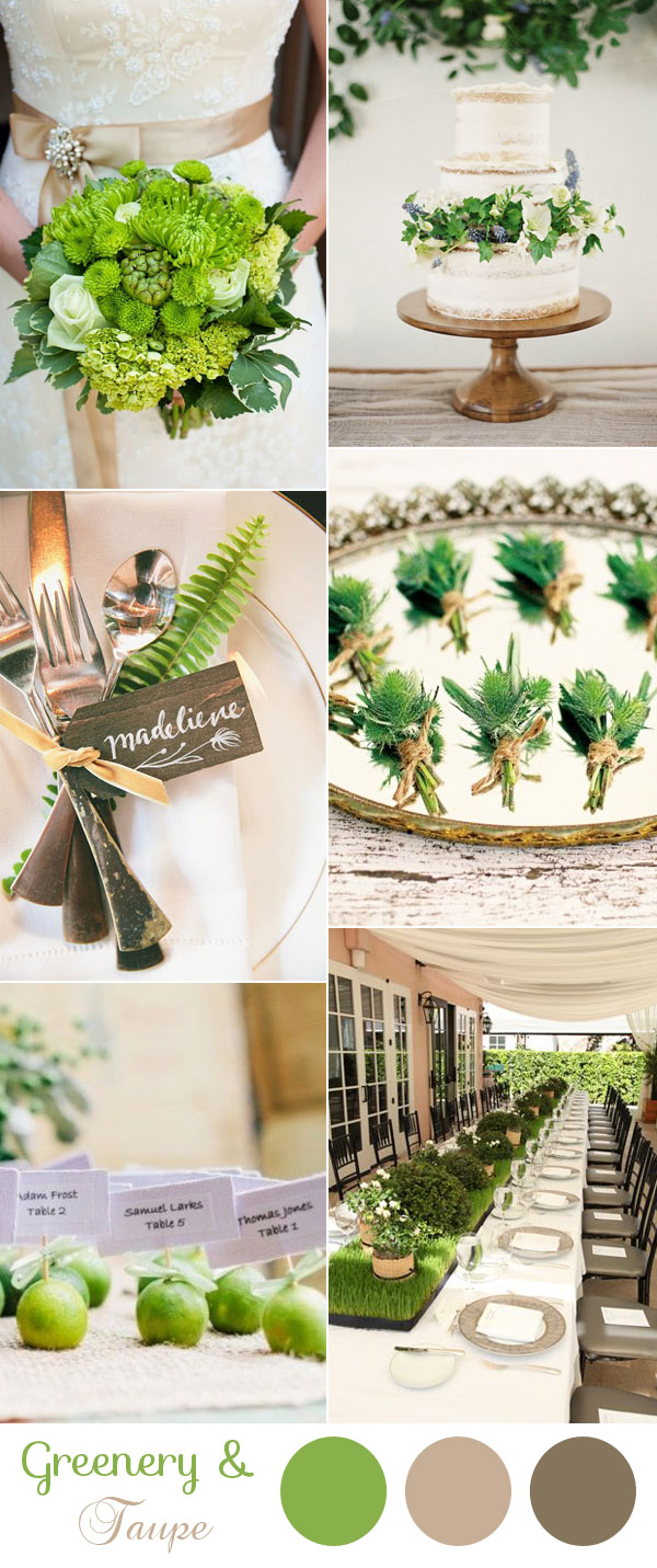 elegant natural greenery and taupe wedding color ideas