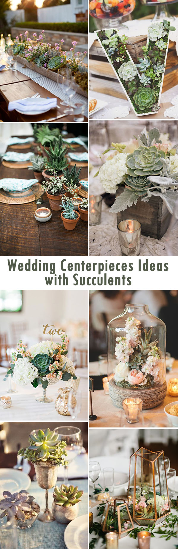 Diy wedding centerpieces ideas with succulents