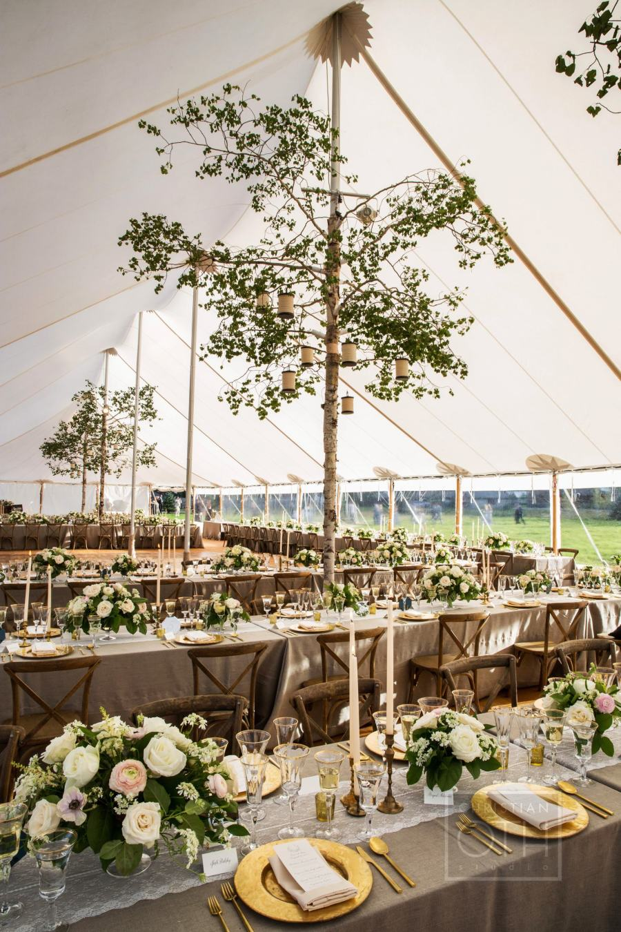 rustic summer tent wedding with tall tree decoration