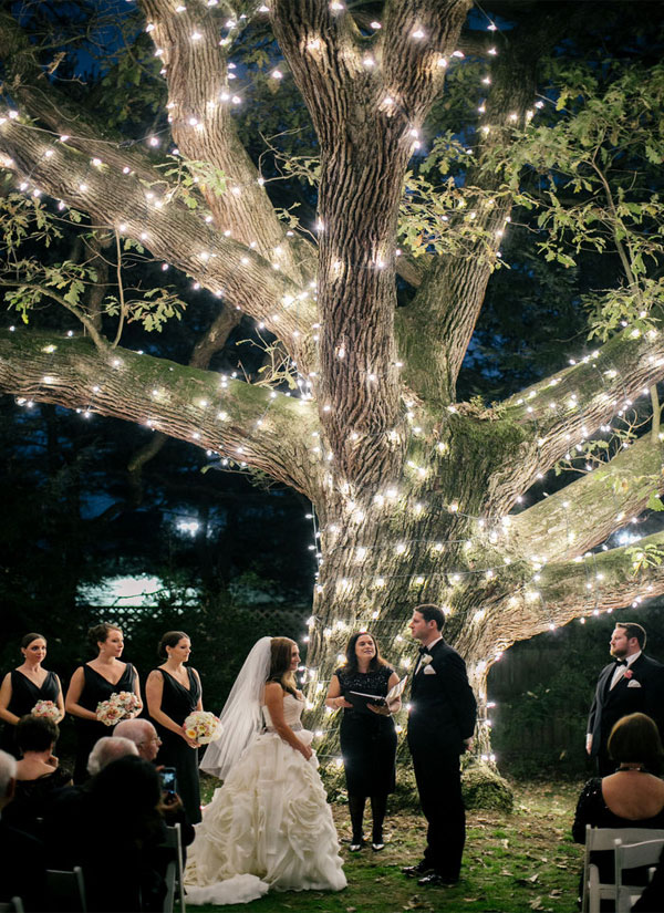 Stunning Garden Wedding Decoration Illuminated Tree