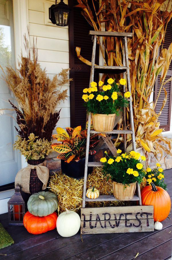 Amazing Fall Wedding decorating ideas with Ladder and Pumpkins