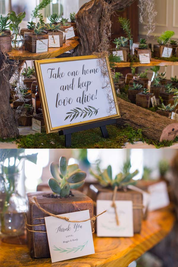Cute Succulent Wedding Favor Ideas
