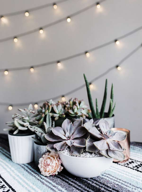 Lovely Succulent Centerpiece Inspiration