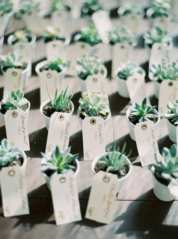 Pretty Succulent Wedding Favor Ideas