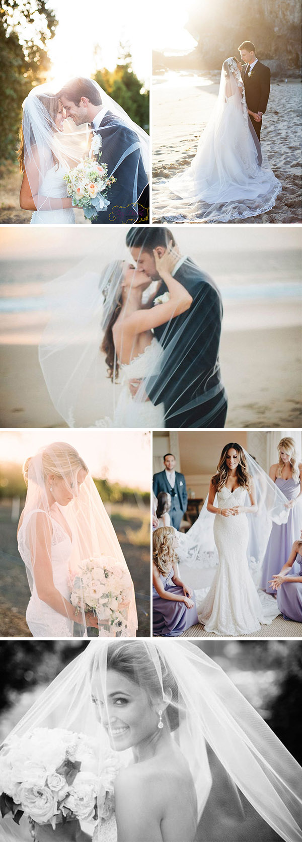 stunning wedding photo poses with bridal veils