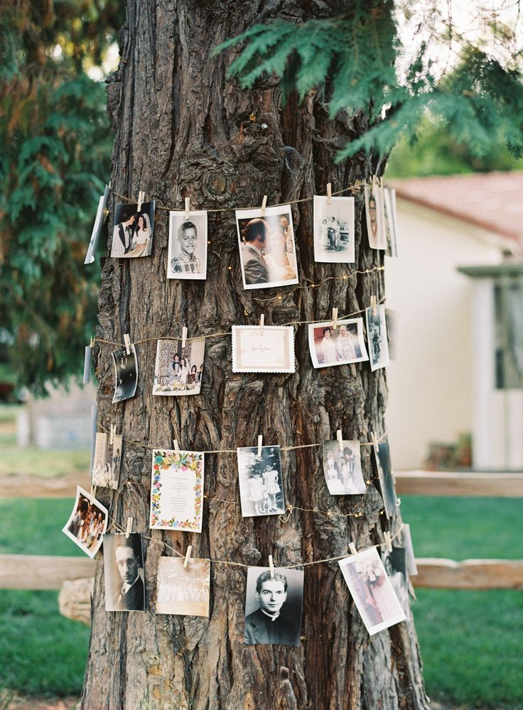 photo display ideas for backyard and woodland weddings
