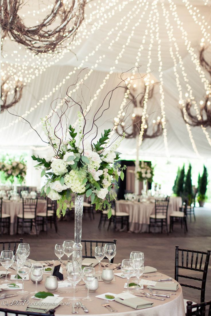 elegant champagne and white canopy wedding reception ideas