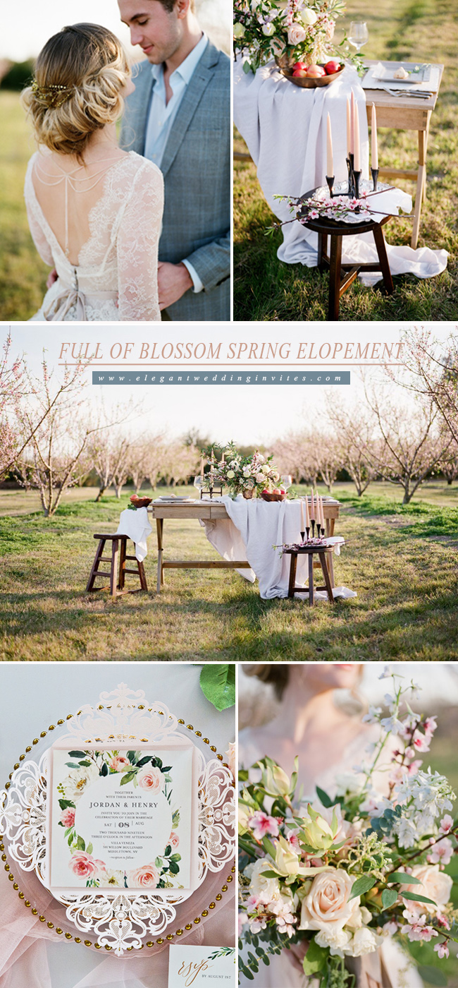 romantic spring elopement inspiration in a peach orchard full of blossom