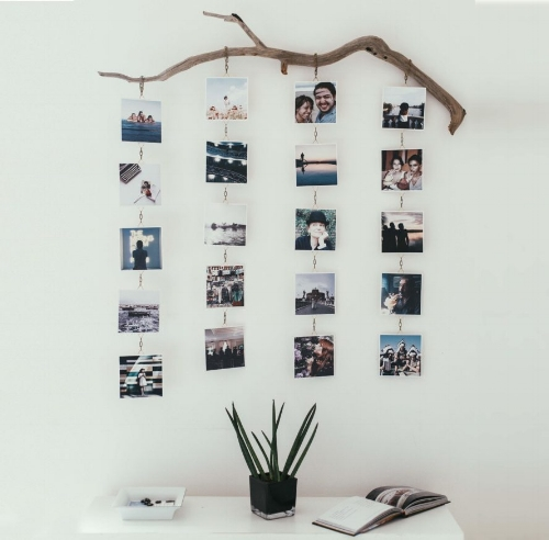 chic DIY driftwood photo display ideas