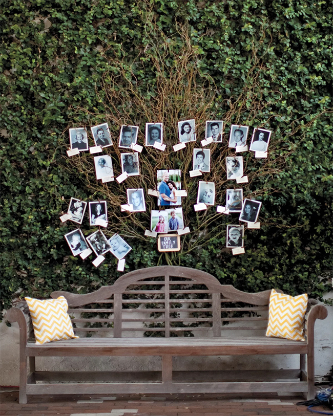 fresh branching out wedding photo display ideas