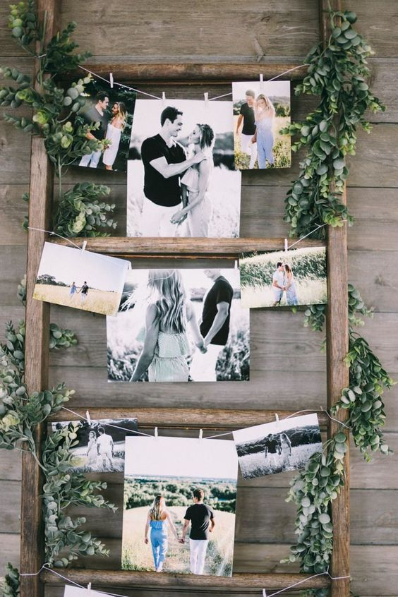special ladder photo display with green plants