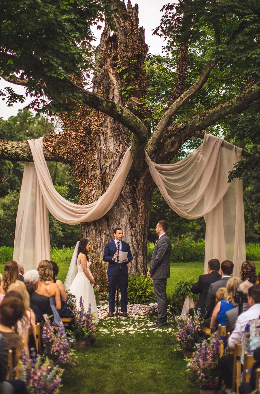 whimsical woodland rustic wedding backderop under giant tree