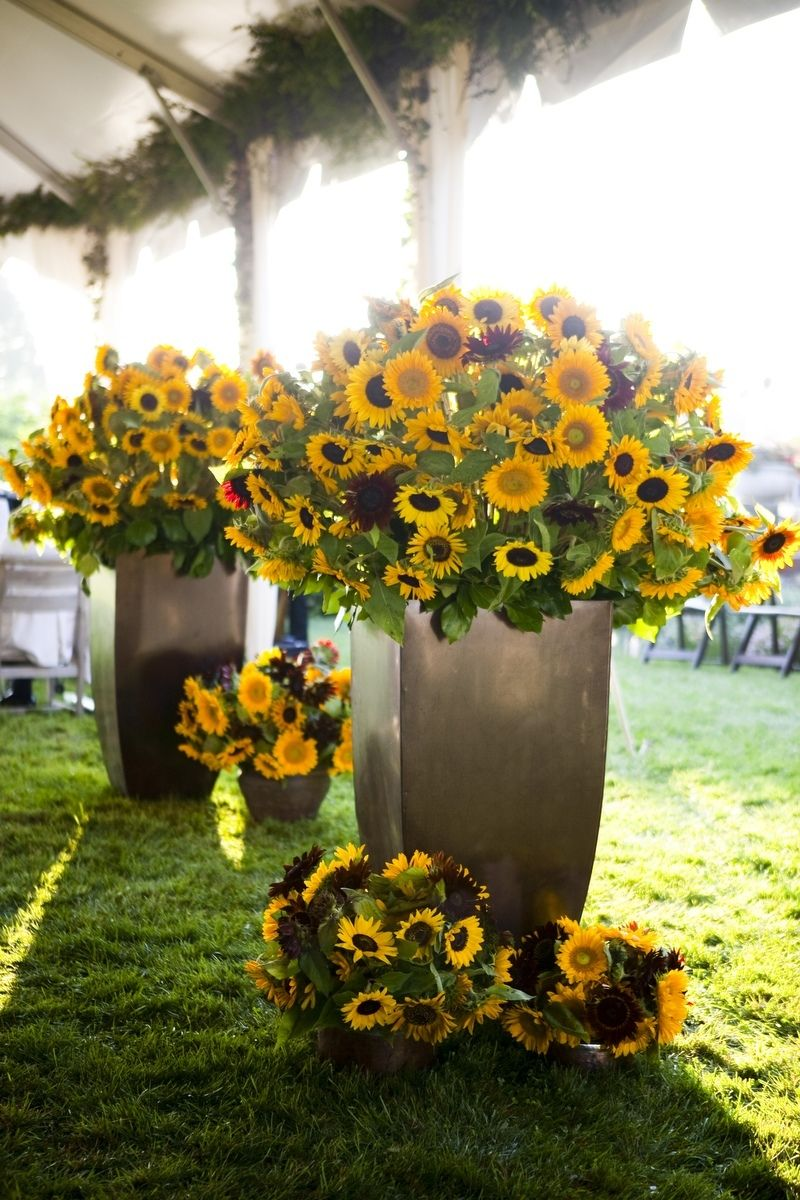 giant sunflower rustic wedding decoration
