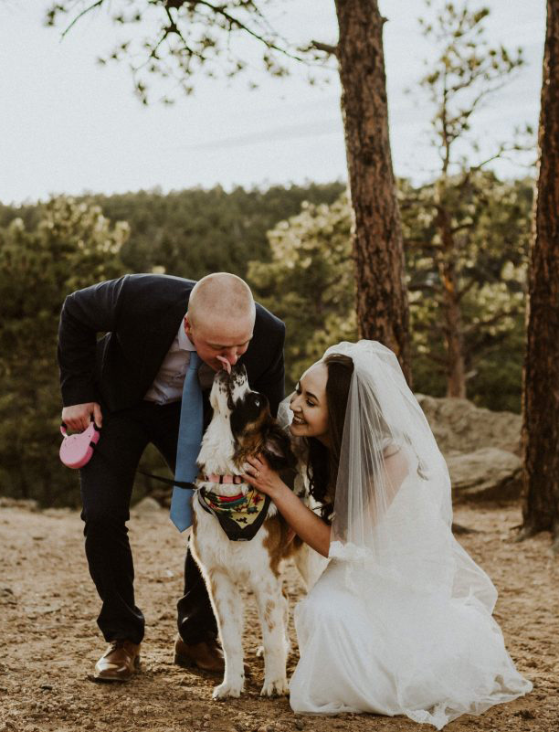 bring your pet along for the ride at a small intimate wedding