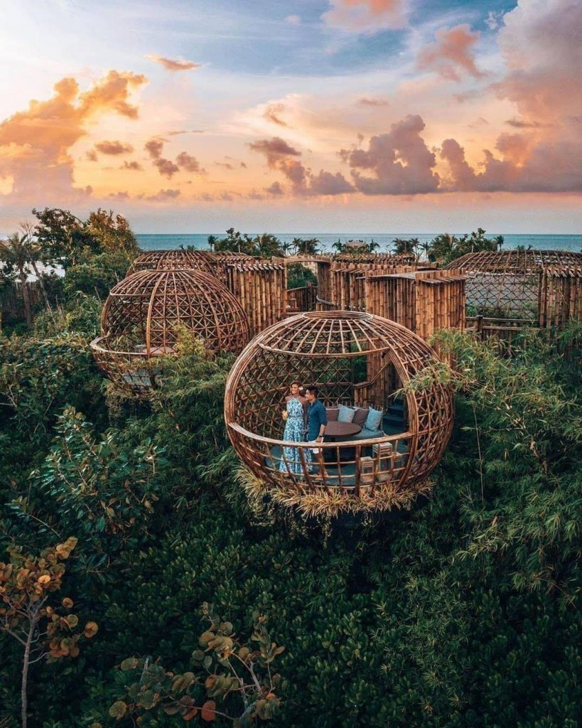 amazing birdcage honeymoon hotel above on the tree in forest