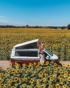 inpiration summer honeymoon by driving cars on your own